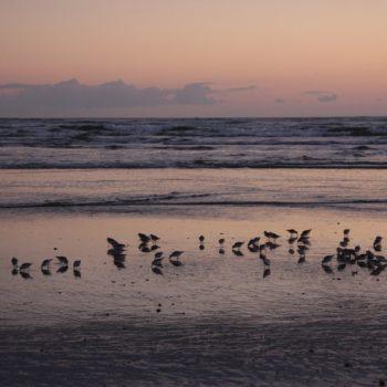 Playas de Isla Canela